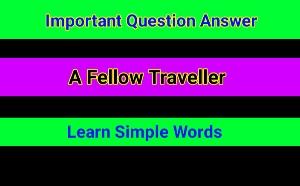 A Fellow Traveller
