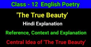 The True Beauty Hindi Explanation