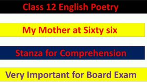 Stanza for comprehension of the poem 'My Mother at Sixty six'